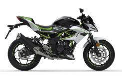 Kawasaki Z125 2019 24