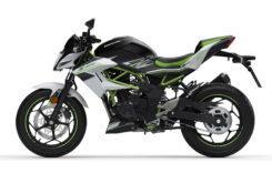 Kawasaki Z125 2019 25