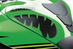 Kawasaki ZX 10R 2019 87