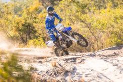 Yamaha WR450F 2019 13