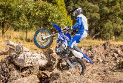 Yamaha WR450F 2019 14
