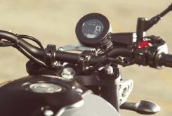 Yamaha XSR900 2019 11