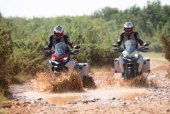 Ducati Multistrada 1260 Enduro 2019 65