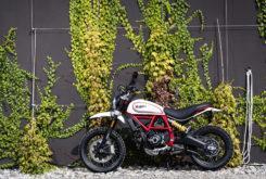 Ducati Scrambler Desert Sled 2019 01