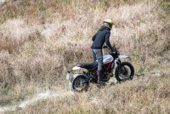 Ducati Scrambler Desert Sled 2019 04