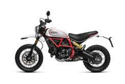 Ducati Scrambler Desert Sled 2019 07