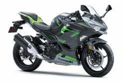 Kawasaki Ninja 400 2019 04