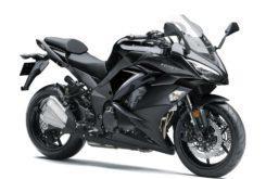 Kawasaki Z1000SX 2019 22