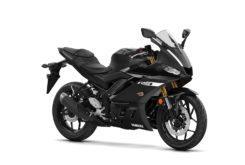 Yamaha YZF R3 2019 24