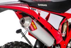 GasGas EnduroGP 250 2019 01