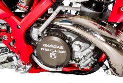 GasGas EnduroGP 250 2019 03