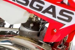 GasGas EnduroGP 250 2019 04
