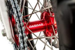 GasGas EnduroGP 250 2019 26