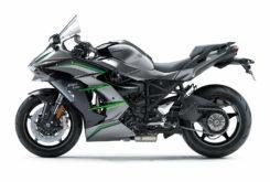 Kawasaki Ninja H2 SX SE Plus 2019 18