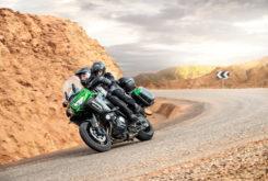 Kawasaki Versys 1000 SE 2019Accion9