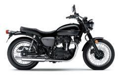 Kawasaki W800 Street 2019 02