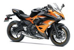 Kawasaki Ninja 650 2019 12