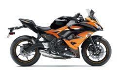 Kawasaki Ninja 650 2019 13