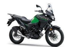 Kawasaki Versys X 300 2019 02