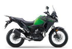 Kawasaki Versys X 300 2019 03