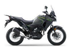 Kawasaki Versys X 300 2019 06
