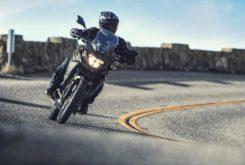 Kawasaki Versys X 300 2019 08