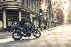 Kawasaki Versys X 300 2019 15