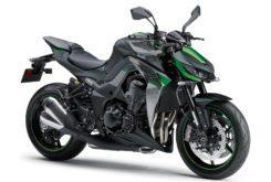 Kawasaki Z1000 R 2019 06