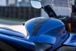 Yamaha r3 2019 protector