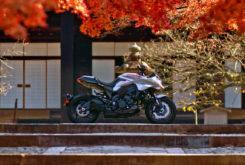 Suzuki Katana 2020 Nobuatsu Aoki opinion (1)