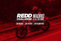 REDD Challenge 2019 Triumph