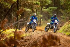 Yamaha WR250F 2020 10