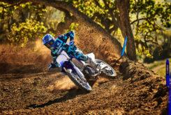 Yamaha YZ250 2020 03