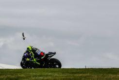 GP Australia mejores fotos MotoGP Phillip Island 2019 (130)