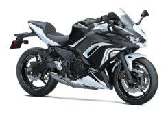 Kawasaki Ninja 650 2020 24