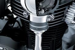 Kawasaki W800 2020 06