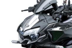 Kawasaki Z H2 2020 10