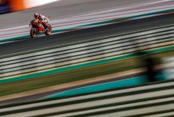 GP Valencia MotoGP 2019 galeria mejores fotos (108)