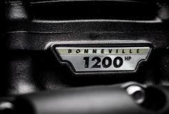 Triumph Bobber TFC 2020 29