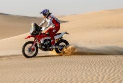 Dakar 2020 Etapa 11 (28)