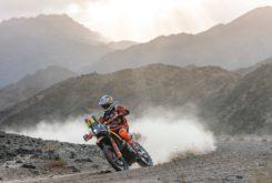Dakar 2020 Etapa 4 (10)