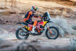 Dakar 2020 Etapa 5 (19)