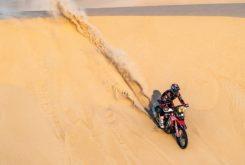 Dakar 2020 Fotos Etapa 10 (19)