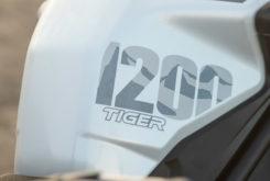 Triumph Tiger 1200 Alpine 2020 16
