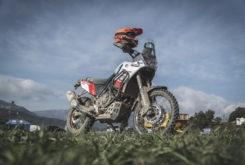 Bassella Race 1 2020Yamaha Tenere 3253
