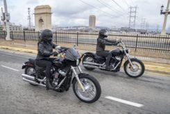 Harley Davidson Softail standard carnet A2