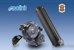 Polini motor electrico