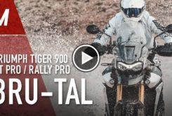 Triumph Tiger 900 2020 video prueba play
