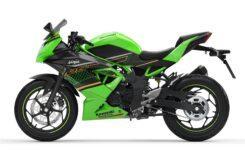 Kawasaki Ninja 125 2020 (11)