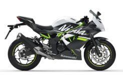 Kawasaki Ninja 125 2020 (12)